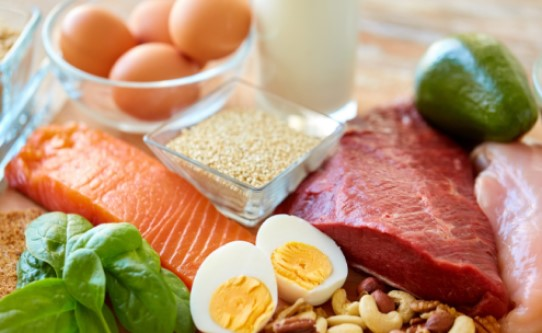 Barf diyeti için zengin besin kaynakları