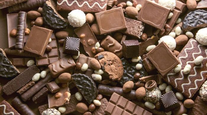 Çikolata köpeklere zararlı besinlerden biridir.