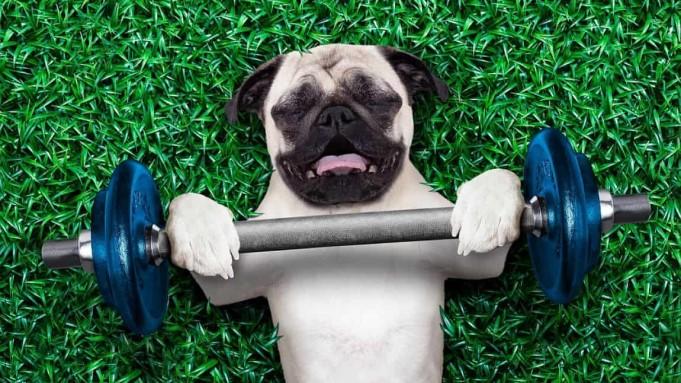 Egzersiz eksikliği birçok soruna yol açabilir.