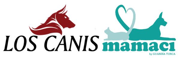 Los Canis ve Mamacı